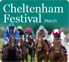 Cheltenham National Hunt